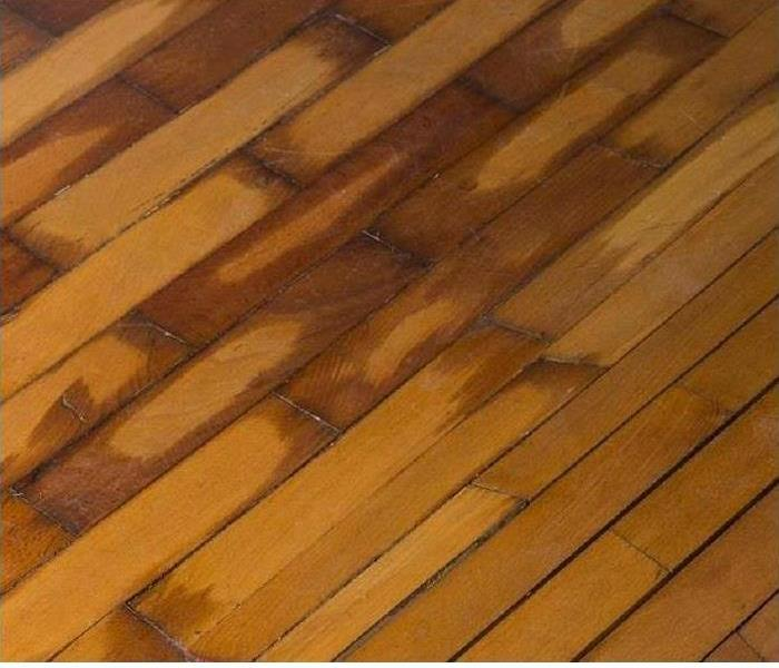 Strategies to Remove Water in Wood Flooring of Dallas Homes