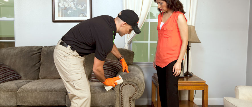 Moody, AL carpet upholstery cleaning